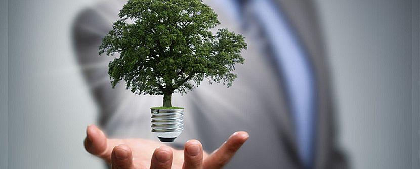 Conheça as 04 maiores empresas sustentáveis que investiram em energia solar!